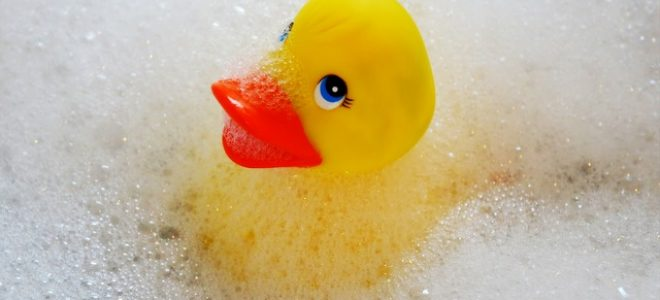 Bathing Rubber Ducky